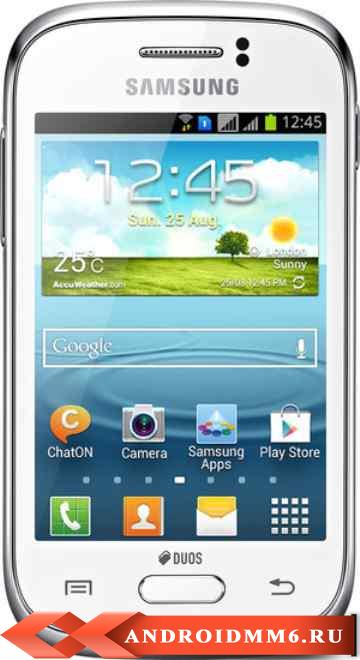 Samsung Galaxy Young Duos (S6312)